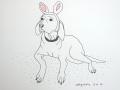 Weimaraner wearing Bunny Ears